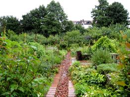 5930--experimentiergarten-img-1145