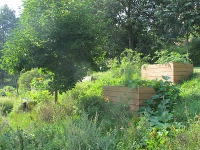 Garten (2) (Kopie)