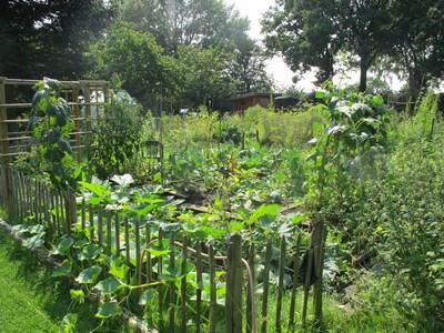 Garten mit Eingang (Kopie)
