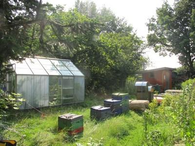 Gewaechshaus mit Bienstoecken (Kopie)