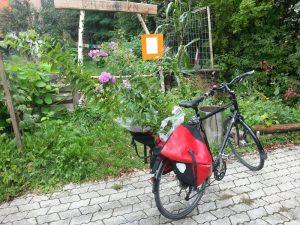Gartenradtour