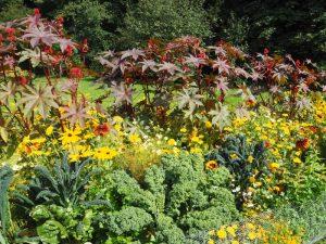 Blumen und Gemüse