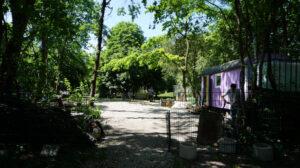 neues Gartengelände von o'pflanzt is! im Olymiapark, (c) o'pflanzt is!