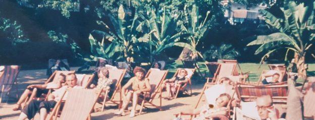 Liegestühle vor palmen